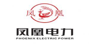 凤凰电力有限公司