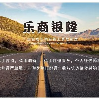 乐清市乐商银隆信息技术有限公司