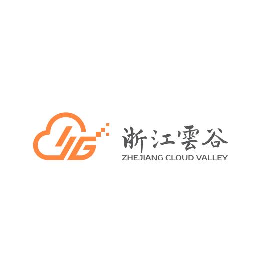 浙江云谷电子产业发展有限公司
