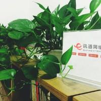 温州讯通网络科技有限公司