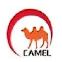 乐清市骆驼物流有限公司